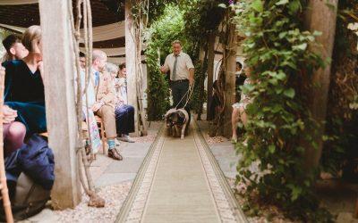 The Lucky Piglet Ceremony